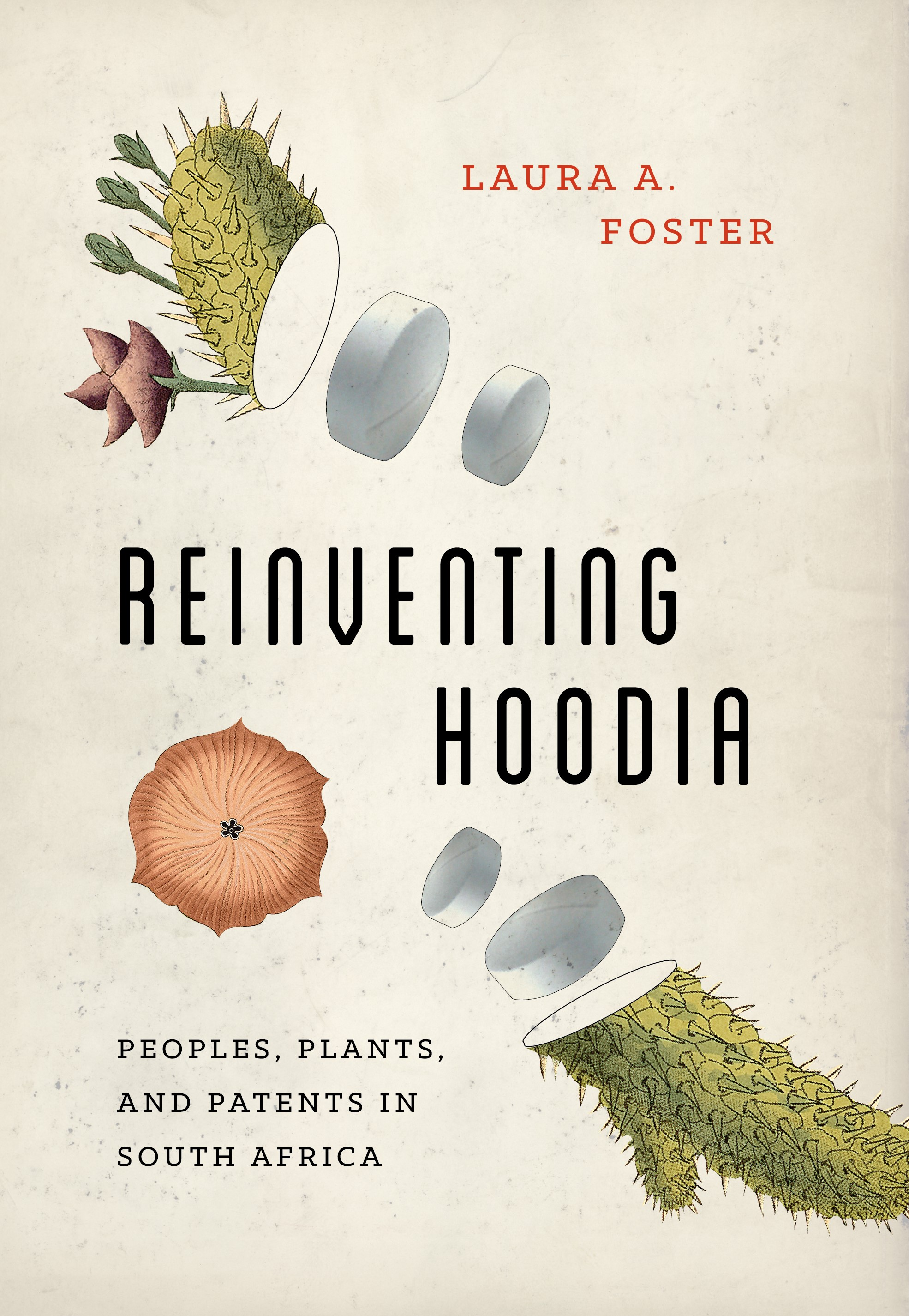 Reinventing Hoodia: Peoples, Plants and Patents in South Africa